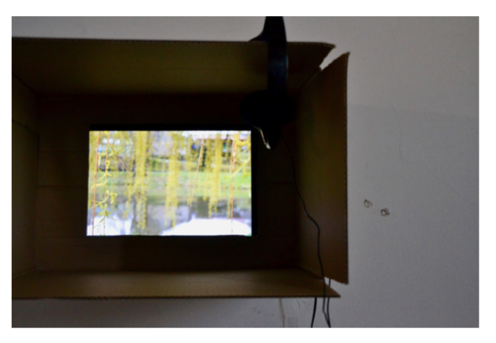 Reception for: kde domov muj , a show by Tara Sacerdote (Smith College class of '18)